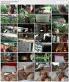 Jill Kassidy (Virtual Vacation Singapore 3/9) (2019) HD 1080p